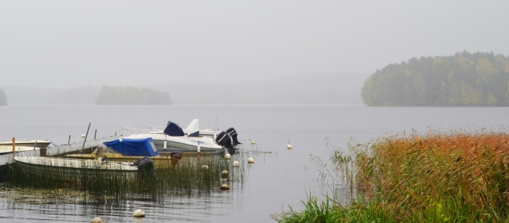 A misty morning in Nora, Sweden last fall. (Photo by Clay Myers-Bowman)
