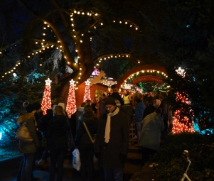 The holiday lights were fantastic.